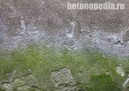 green бетон